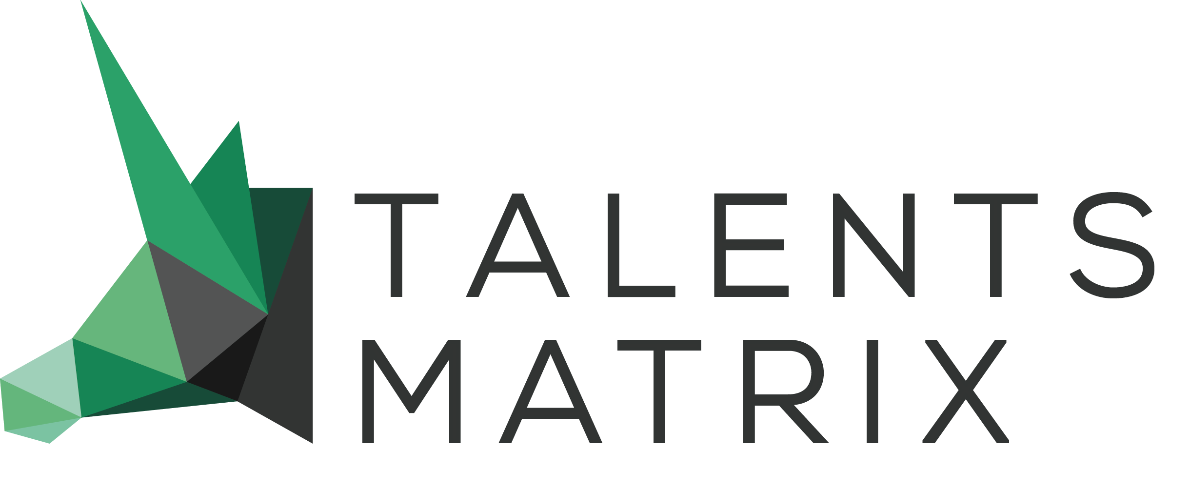 Talents Matrix-A professional Executive Search Agency focused on l IT& Internet industry-TalentsMatrix猎头公司